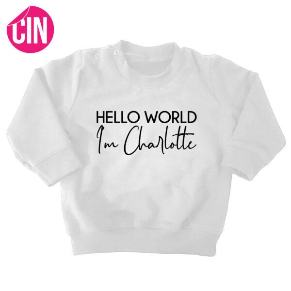 sweater hello world wit